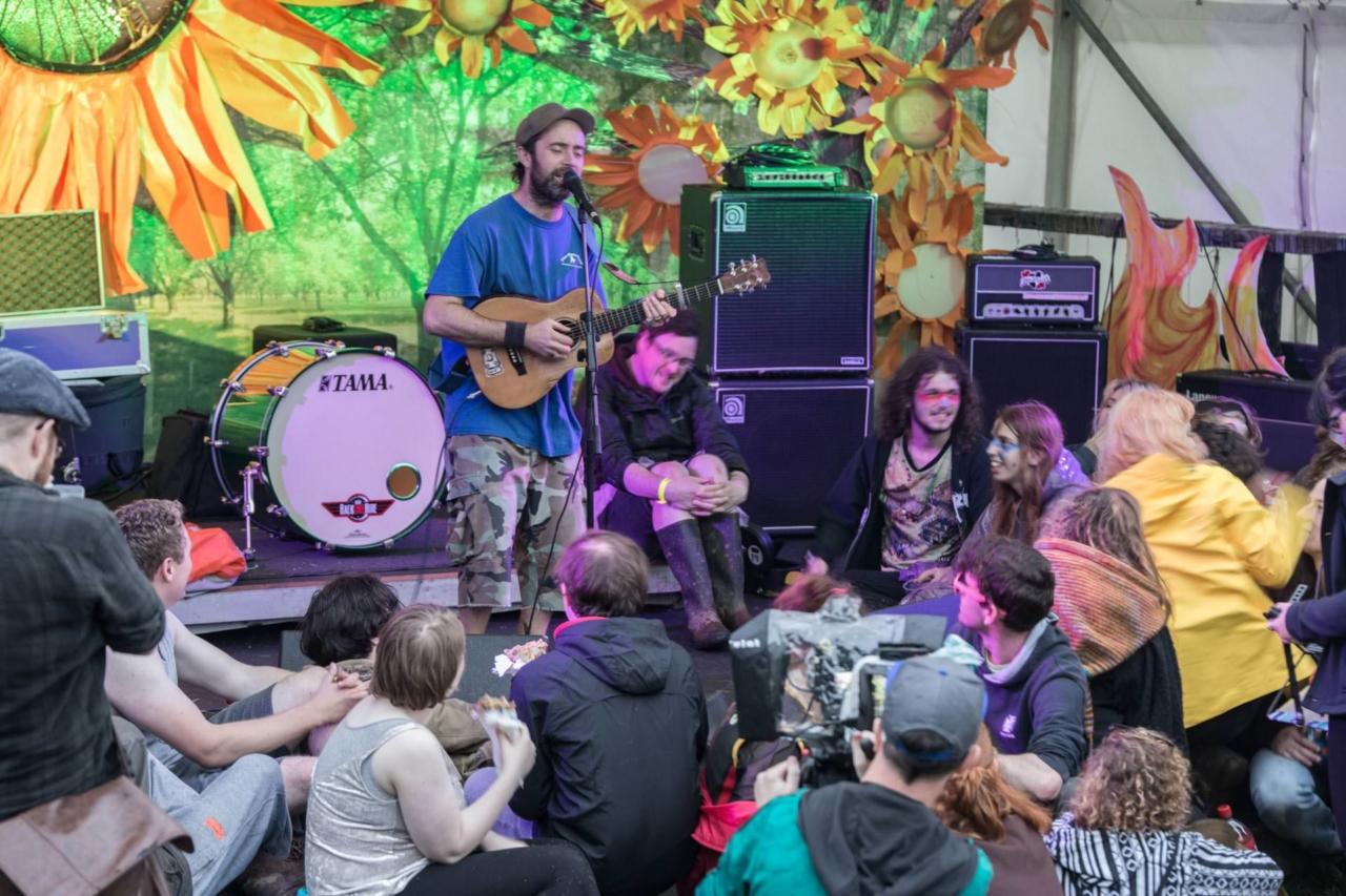Beans On Toast - Sunflowerfest 2017, Tubby's Farm